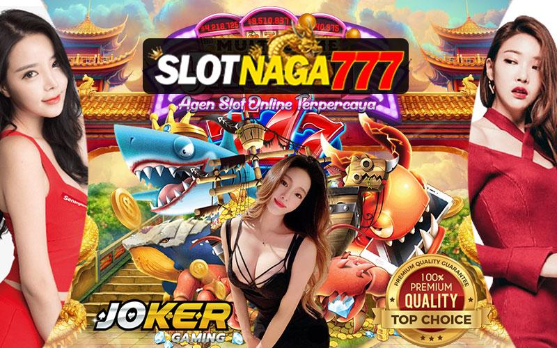 Mpo3 Slot